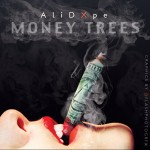 Ameenah Ali – Money Trees