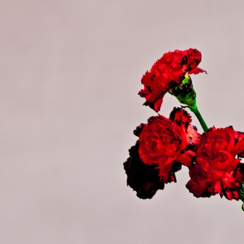 TKWUpRx John Legend - All Of Me