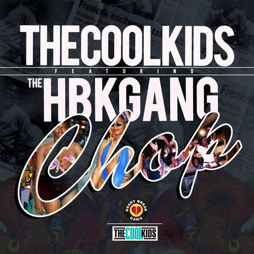 artworks-000067832832-fycd18-t500x500 The Cool Kids - Computer School / Chop Ft.The HBK Gang
