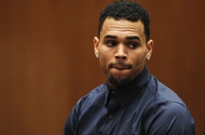 Chris Brown Sued After Basketball Court Fight