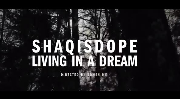 sidnewvideo2014 ShaqIsDope - Living In a Dream (Video)