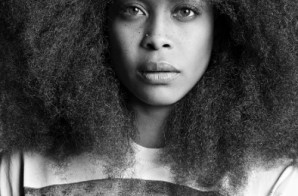 Erykah Badu Fader Fort Performance At SXSW (Video)