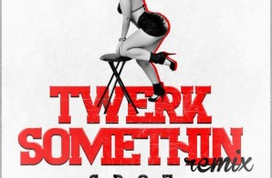S.B.O.E – Twerk Somethin' (Remix) ft. Tee Flii