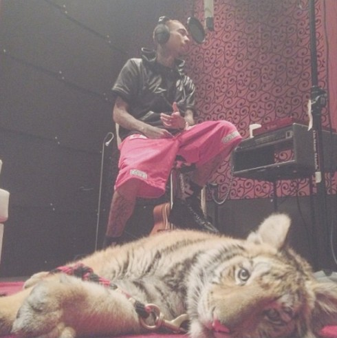 Tyga_Facing_Criminal_Charges_Over_Pet_Tiger