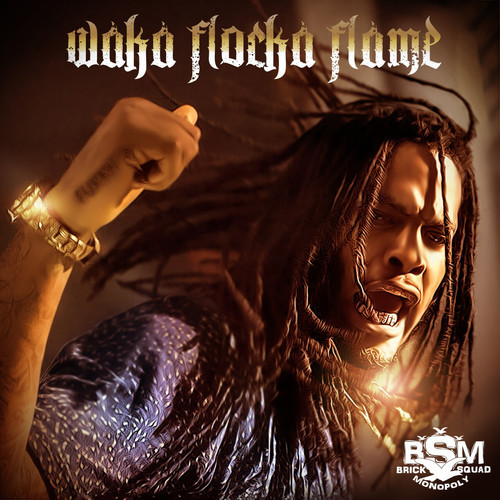 waka-flocka-flame-turn-down-for-what-remix.jpg