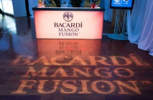 Bacardi Fusion Lounge Event at the Skybox Event Center (Philly) (Photos)