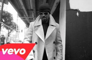 Ray J – Never Shoulda Did That (Video)