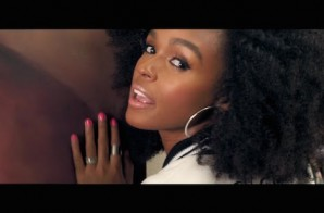 Janelle Monae – Electric Lady Ft. Solange (Video)