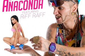 Riff Raff – Anaconda (LA Leakers Remix)
