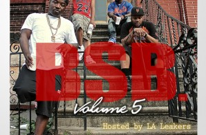Troy Ave & BSB – BSB Vol. 5 (Mixtape) (Hosted By LA Leakers)