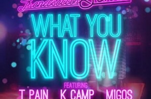 Trendsetter DJ Sense x T Pain x K Camp x Migos – What You Know (Artwork) (HHS1987 Exclusive)