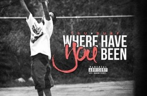 Tsu Surf – Where Have You Been