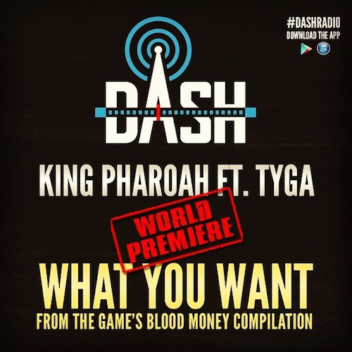 what you need Pharaoh Jackson   What You Want ft. Tyga
