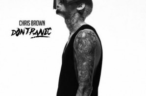 Chris Brown – Don't Panic (Remix)