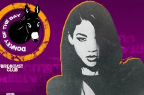 Charlamagne Tha God Issues Donkey Of The Day To Lifetime's Aaliyah Movie