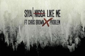 Siya – Nigga Like Me Ft. Chris Brown & Problem (Prod. By Amadeus)