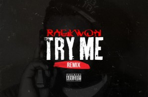 Raekwon – Try Me (Remix)