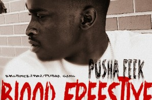Feek Pusha – Blood Freestyle