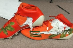 Hated It: Warren Sapp Hates The Switch From Nike To Adidas So Much, He Destroyed His Sneakers (Photo)