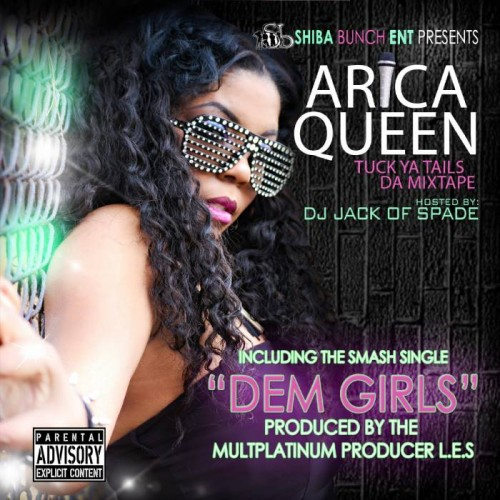 IMG_20131231_172055-500x500 Arica Queen - Dem Girls (Prod. By @DJLES)