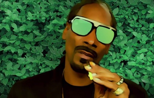 "Snoop Dogg & Pharrell ""BUSH"" Album Trailer (Video)"