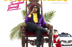 Trinidad James – Palm Trees