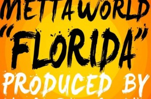Metta World Peace – Florida