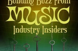 "Tamiko Hope Does It Again With Her Book ""5 Key Facts To Building Buzz From Music Industry Insiders"""