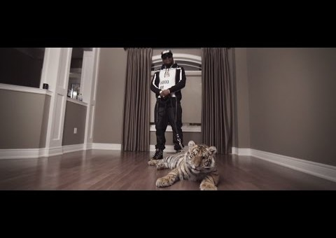 Harvey Stripes – Blanco (Video)