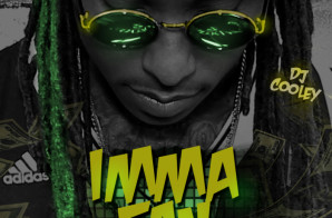 DJ Cooley – Imma Fan