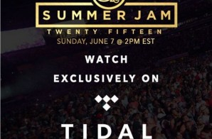 TIDAL To Stream Hot 97's Summer Jam