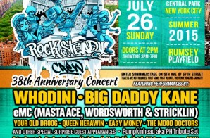 Rock Steady Crew's 38th Anniversary Concert In Central Park