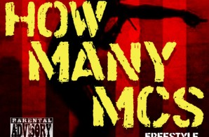 Chris Rivers – How Many MC's Freestyle Ft. Termanology