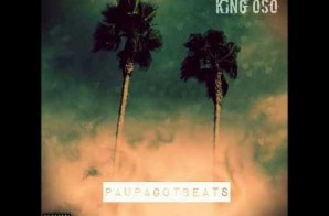 King Oso – Stingy (Prod. By Paupa)
