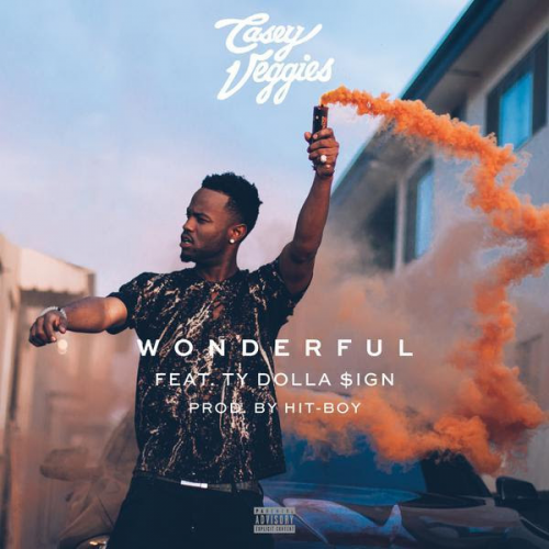 casey-veggies-500x500 Casey Veggies Ft. Ty Dolla $ign - Wonderful (Prod. By Hit-Boy)