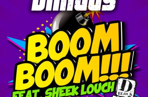 Shaggy – Boom Boom (Remix) Ft Sheek Louch