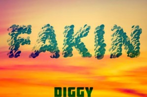 Diggy – Fakin' Ft. Omarion & Ty Dolla $ign