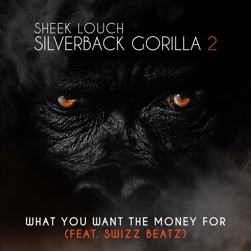 sheek-louch-what-you-want-the-money-for Sheek Louch - What You Want The Money For Ft. Swizz Beatz