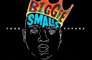 Pook Paperz – Biggie Freestyle