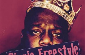 Lee Mazin – Biggie (Freestyle)