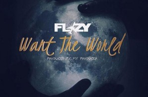Flizy – Want The World (Prod. By My Producer)