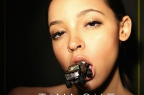Tinashe – Ride Of Your Life (Prod. By Metro Boomin)