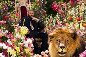 "DJ Khaled Unveils ""Major Key"" Album (Artwork)"
