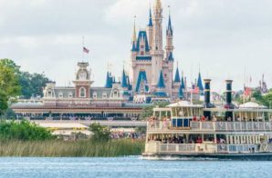 A Toddler Was Dragged Into Seven Seas Lagoon By An Alligator Last Night At A Orlando Disney Resort