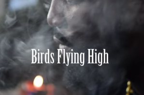 Tsu Surf – Flying High (Video)