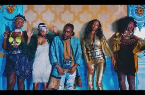 Wale – My PYT (Video)