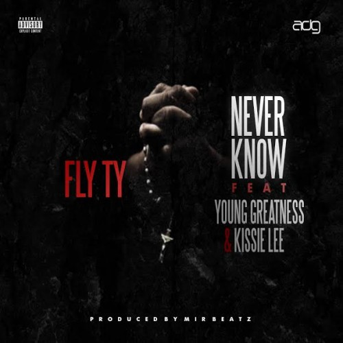unnamed-2-1-500x500 Fly Ty x Young Greatness x Kissie Lee - Never Know