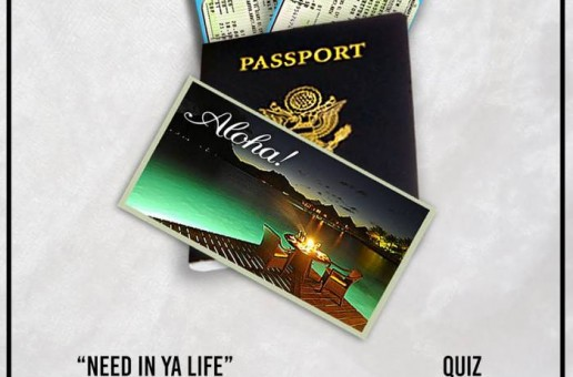 Quiz – Need In Ya Life ft. Damani Nkosi & Ghrimm (prod. by The Teamsterz)