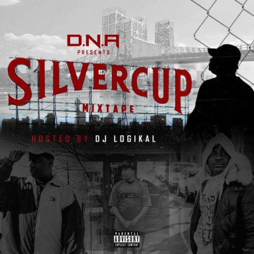dna-silver-cup