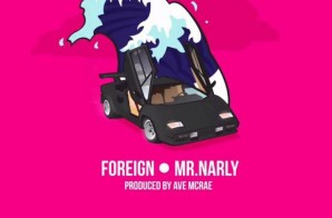 Mr. Narly – Foreign Video